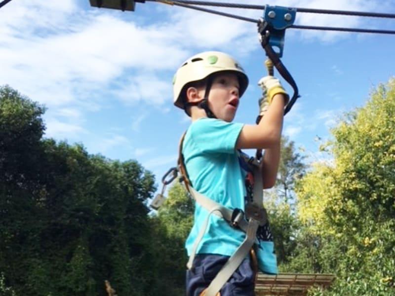 Things in Sydney for older kids - Trees Adventure