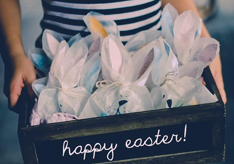 Bunny bags to make for Easter