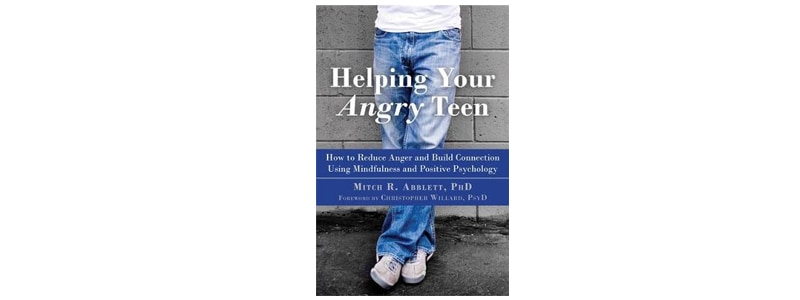 Books about raising boys: Helping Your Angry Teen