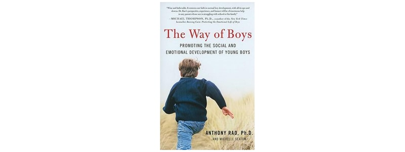 Books about raising boys: The Way of Boys