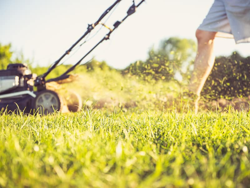 Lawnmower parents: why mowing down life's hard bits isn't good for kids