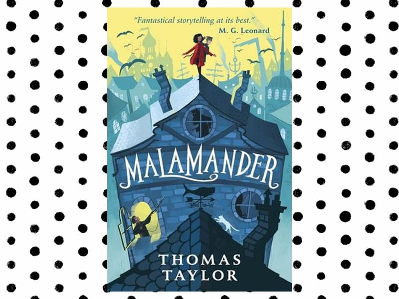 Books for reluctant readers: Review of Malamander by Thomas Taylor