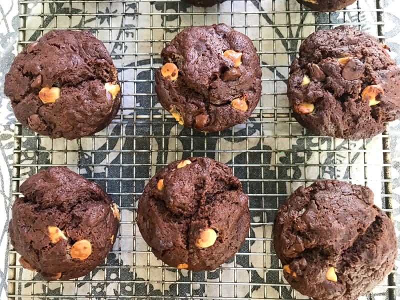 Fudgy triple chocolate chocolate chip muffins