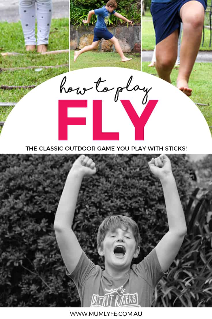 How to play the game of Fly